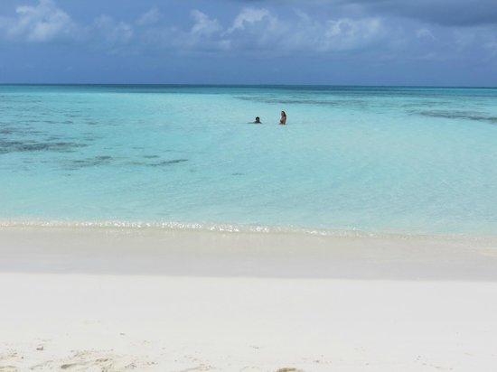 Isla de Carenero - Los Roques: A cor da água é fenomenal