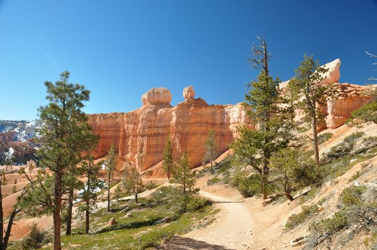 Bryce Canyon National Park: From the trail walk.