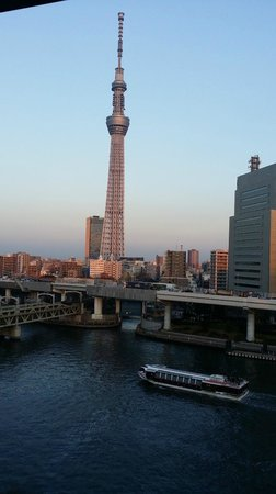 Dormy Inn Express Asakusa: View from Roof Spa