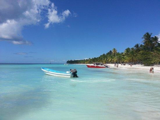 Isla Saona: en la isla - parador soltour