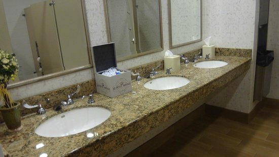 Hilton Garden Inn Savannah Midtown: Hotel Bathroom
