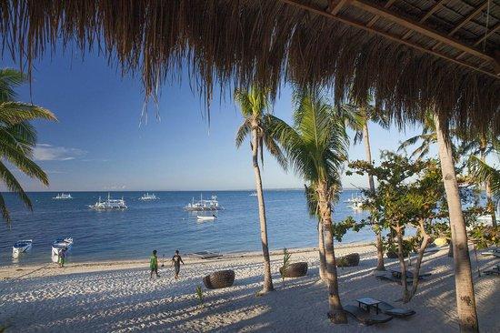 Ocean Vida Beach & Dive Resort: Restaurant iew