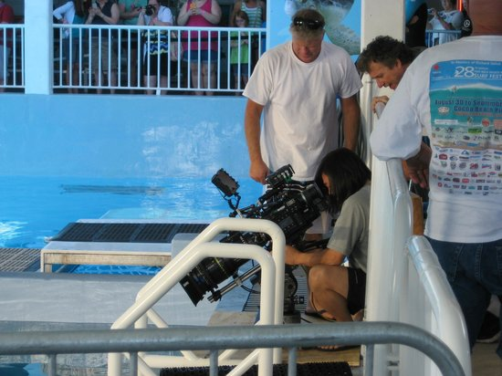 Clearwater Marine Aquarium: Filming of Sequel Movie