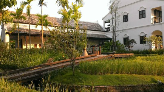 The Marndadee Boutique Resort Chiang Mai : The lovely rice field