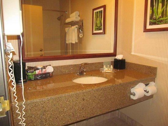 Holiday Inn Santa Ana-Orange County Airport: bath