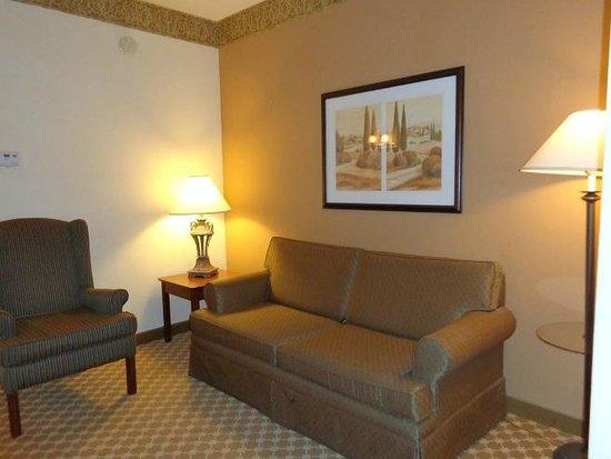 Country Inn & Suites By Carlson, Smyrna: sofa