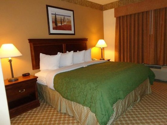 Country Inn & Suites by Radisson, Smyrna, GA: bed