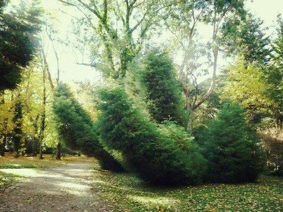Jardin Botanico de la Universidad Austral de Chile: Abril 2014
