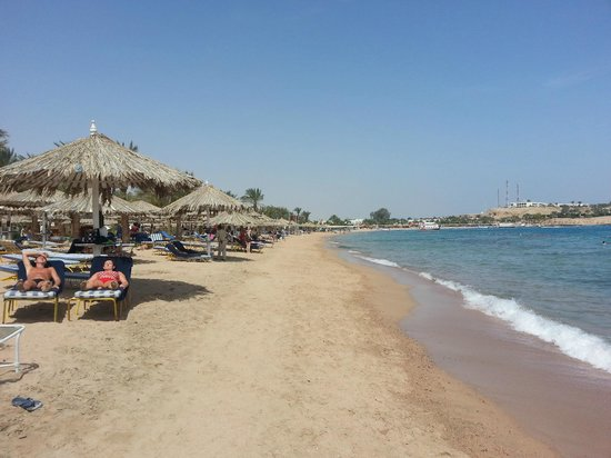 Fayrouz Resort Sharm El Sheikh : пляж