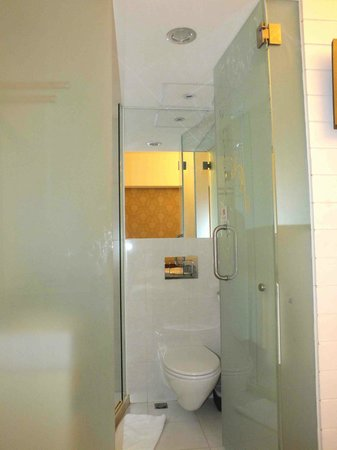 Ole Tai Sam Un Hotel: Toilet with frosted glass door (not the most private facility)