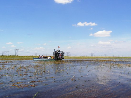 Sawgrass Recreation Park: One of the air boats.