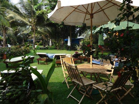 Santana Beach Resort : Lawn