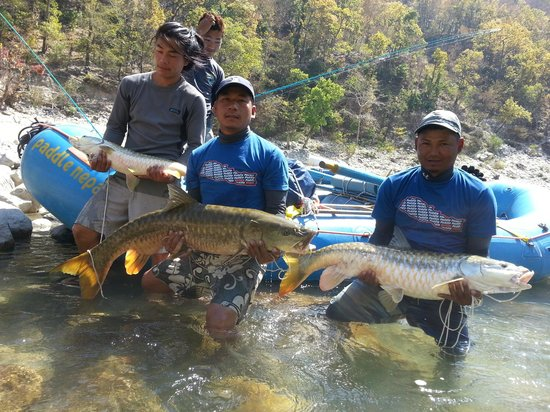 Paddle Nepal - Day Tours: Some of the catches :)