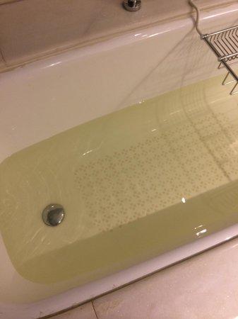ITC Mughal, Agra: Bath water