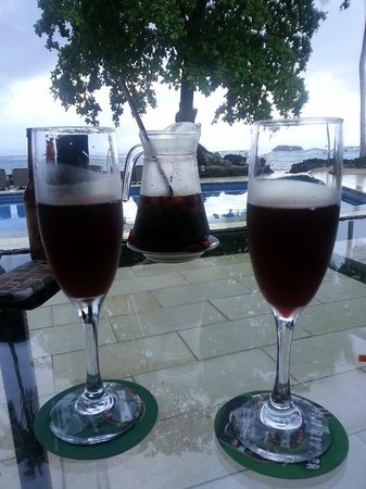 Garden Island Resort : Pre-dinner cocktails (sangria)