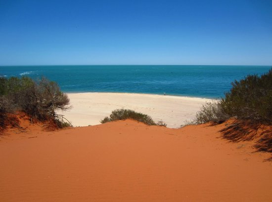 shark bay personals Shark bay scenic quad bike tours, denham: see 22 reviews, articles, and 8 photos of shark bay scenic quad bike tours, ranked no7 on tripadvisor among 13 attractions in denham.