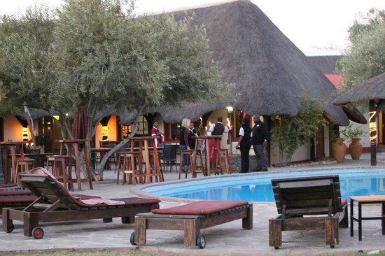 Namib Desert Lodge : プールサイド