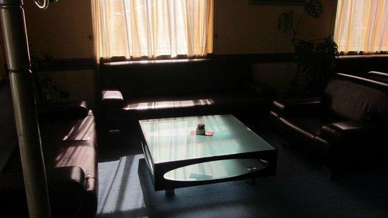 Hotel Ani: De inkomst van het hotel sraalt rust uit. Is heel proper