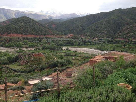 Kasbah Bab Ourika : La vue du potager