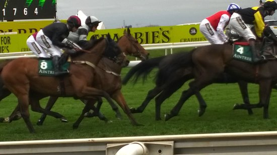 Aintree Racecourse: Grand National 2014