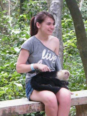 Gumbalimba Park: monkies!