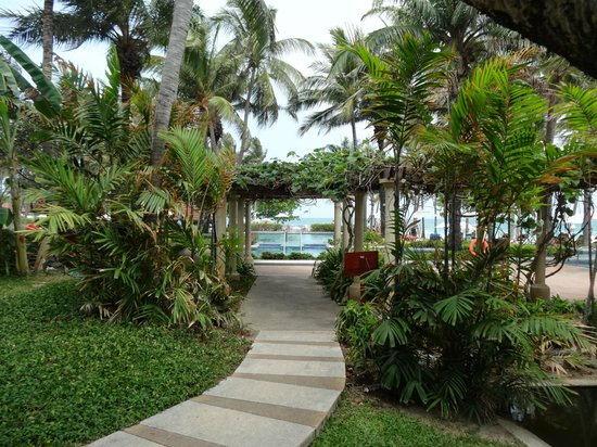 Centara Grand Beach Resort Samui : gardens