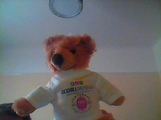 Bexhill-on-Sea, UK: This is my Bexhill Museum 100 Anniversary Bear.  I call him Brassey,  he is so cute and adorable