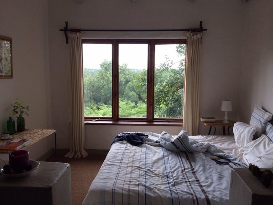 Wild Spirit Lodge and Backpackers: room with a view