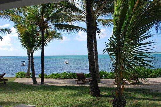 Tropical Attitude: vue chambre