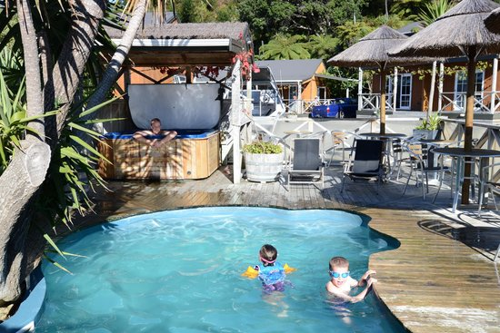 Anchor Lodge Coromandel : Fun in the pool