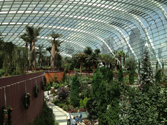 the indoor waterfall picture of gardens by the bay