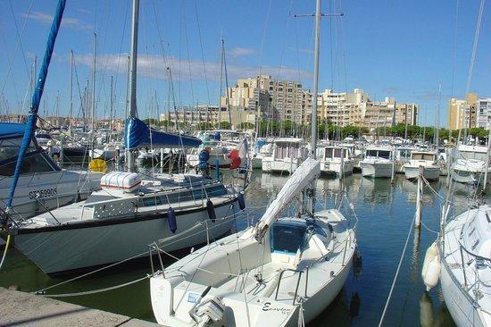 Résidence L'Oliveraie : Aux Alentours / Le Port