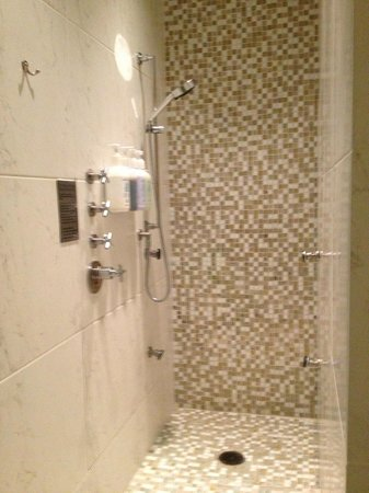 Spa Shower Multi Jets And Rain Head Picture Of The