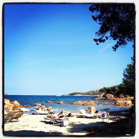 Hotel Le Ginestre: Пляж