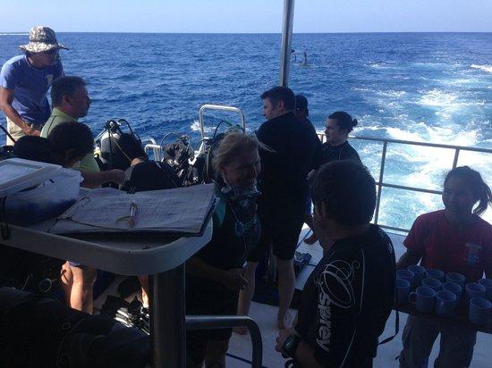 West Coast Divers : Back Deck