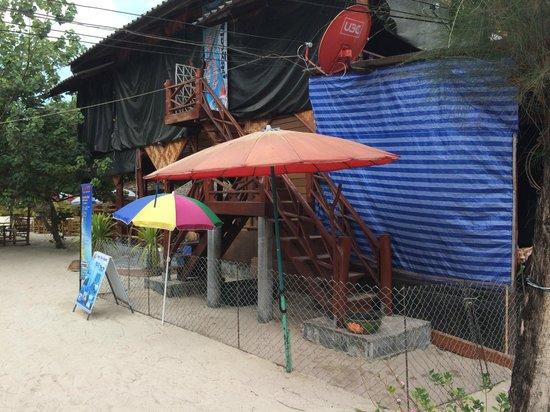 Nice Sea Resort : The dog run