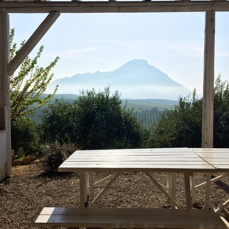 Terre Di Himera: The mountains provide a serene backdrop for this farmstay.