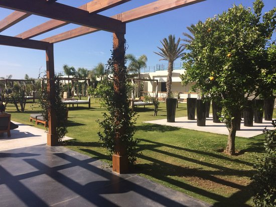 Sofitel Essaouira Mogador Golf & Spa : Jardins de l'hotel