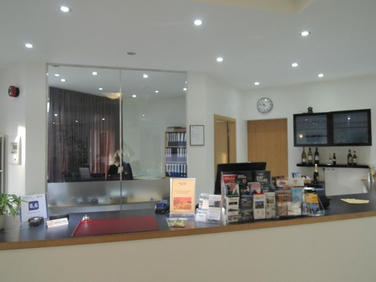 Airport Hotel Aurora Star: Reception