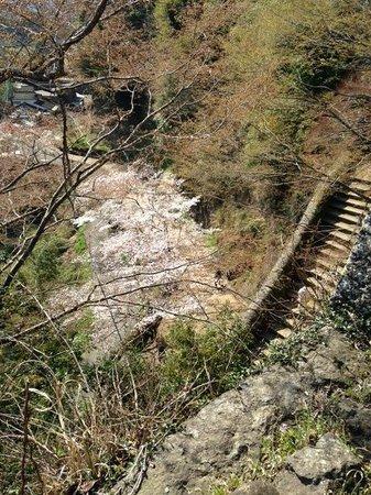 Ruins of Oka Castle: 岡城
