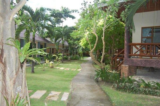 Phi Phi Villa Resort: Территория