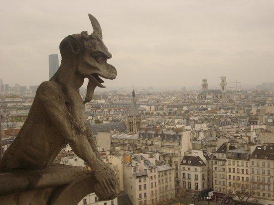 Tours de la Cathedrale Notre-Dame : Gargouille