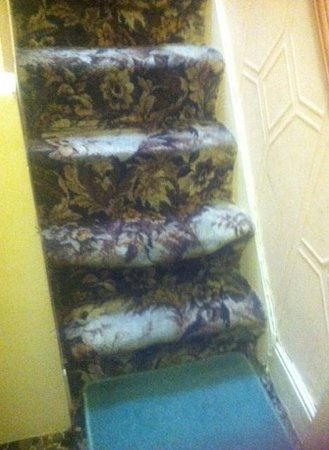 Bed and Beach: Loose stair carpets