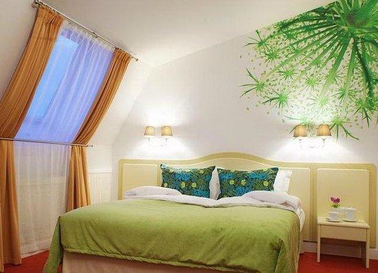 Residence Hotel & SPA: Standart Superior (Стандарт Супериор 4 этаж)