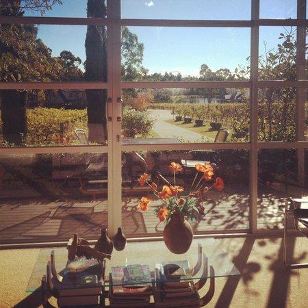 Hunter Valley Cooperage Bed & Breakfast : Living area