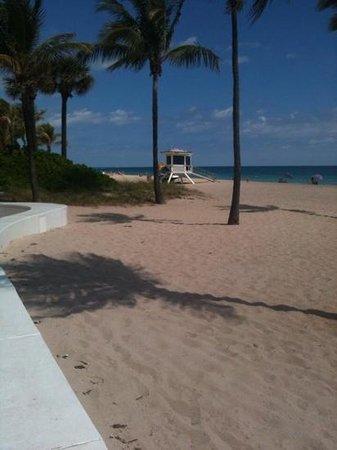 Fort Lauderdale Beach Park : härlig sandstrand