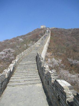 Gran Muralla China en Mutianyu: passage to the 20th tower