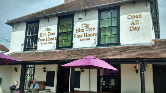 The Elm Tree : Signage