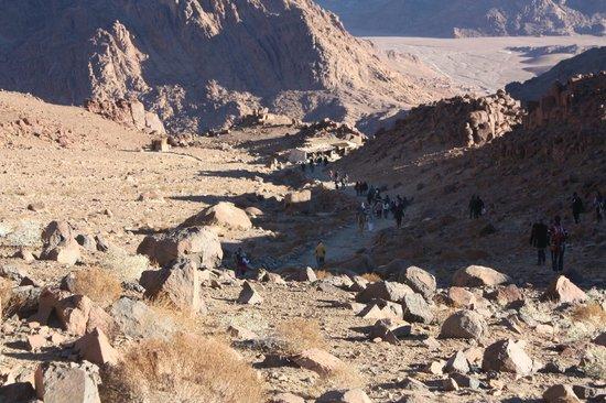 Mount Sinai: Пологая часть дороги