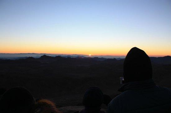 Mount Sinai: Встает!!!!